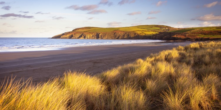 Sand dunes and beach in Pembrokeshire