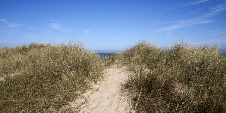 Beach dunes in Winterton-on-Sea Norfolk